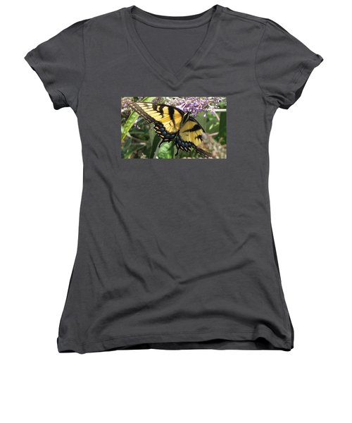Women's V-Neck T-Shirt (Junior Cut) featuring the photograph Old World Swallowtail by Jennifer Wheatley Wolf