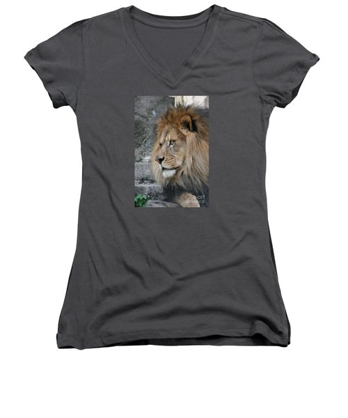 Women's V-Neck T-Shirt (Junior Cut) featuring the photograph Onyo #11 by Judy Whitton