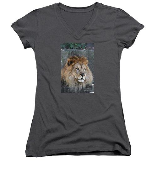 Onyo #7 Women's V-Neck T-Shirt