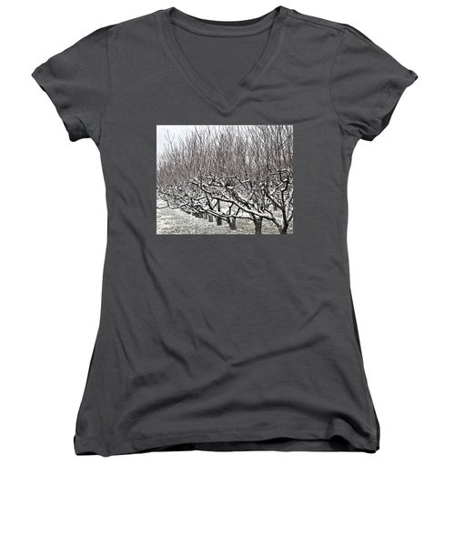 Orchard In Winter Women's V-Neck