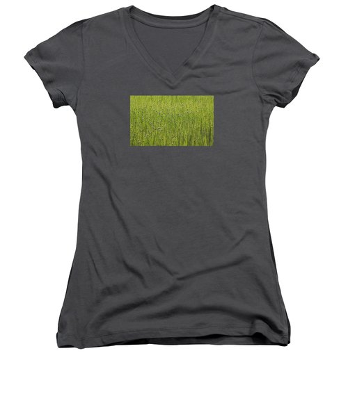 Organic Green Grass Backround Women's V-Neck (Athletic Fit)