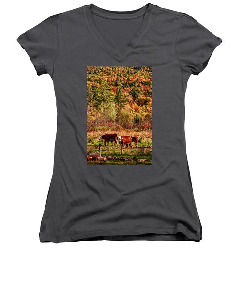 Women's V-Neck T-Shirt (Junior Cut) featuring the photograph Cow Complaining About Much by Jeff Folger