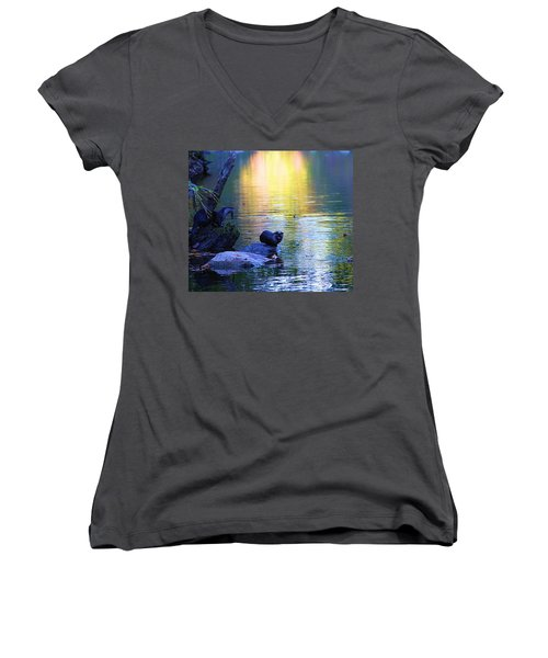 Otter Family Women's V-Neck T-Shirt (Junior Cut) by Dan Sproul