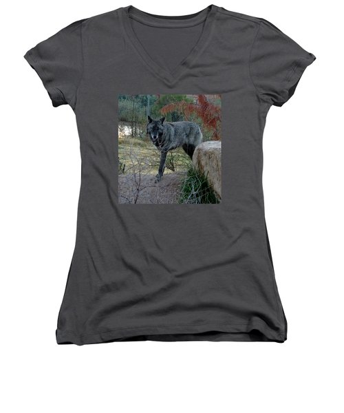 Out Of Africa Black Wolf Women's V-Neck (Athletic Fit)