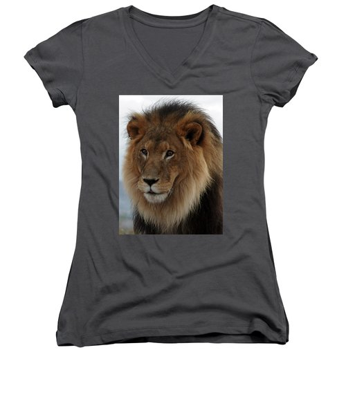 Out Ofafrica  Lion 4 Women's V-Neck (Athletic Fit)