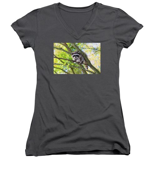 Out On A Limb Women's V-Neck T-Shirt (Junior Cut) by Kym Backland