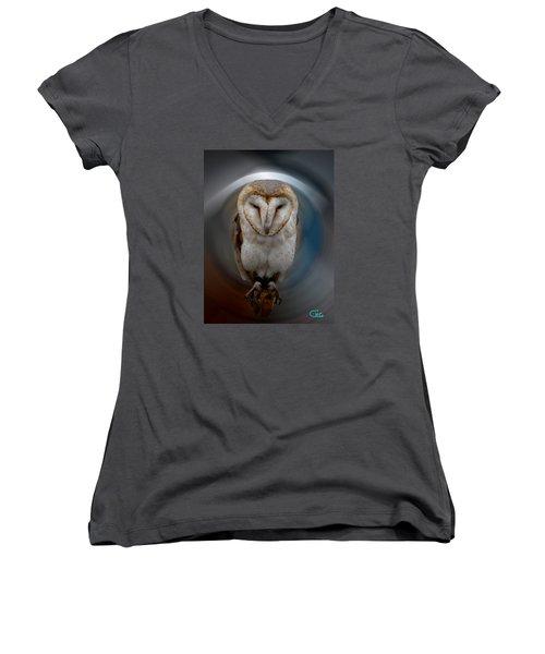 Owl Alba  Spain  Women's V-Neck T-Shirt (Junior Cut) by Colette V Hera  Guggenheim