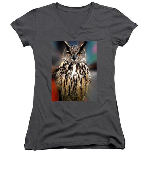 Owl Living In The Spanish Mountains Women's V-Neck