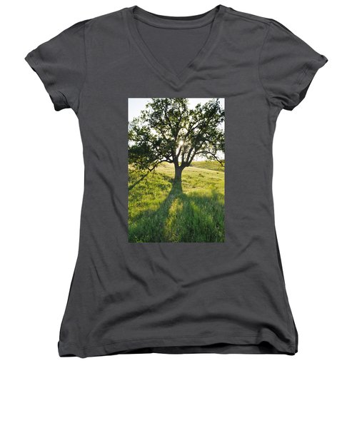 Women's V-Neck T-Shirt (Junior Cut) featuring the photograph Pacific Coast Oak Malibu Creek by Kyle Hanson