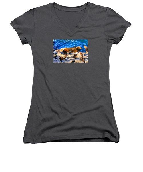 Pacific Harbor Seal Women's V-Neck T-Shirt (Junior Cut) by Jim Carrell