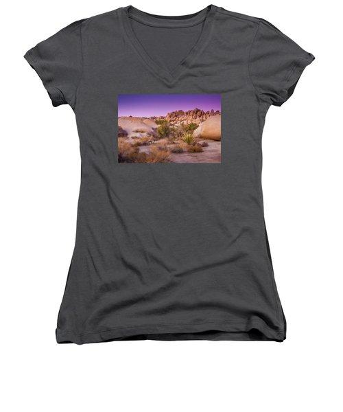 Painterly Desert Women's V-Neck