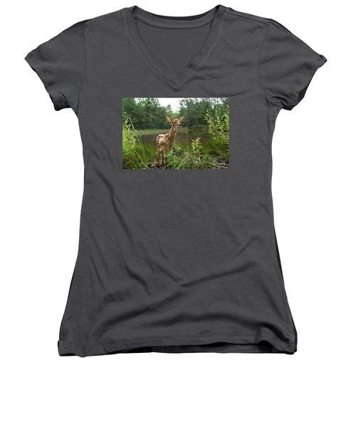 Paradise Found Women's V-Neck T-Shirt (Junior Cut) by Bill Stephens