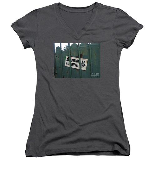 Paris - Farm Dog Women's V-Neck T-Shirt (Junior Cut) by HEVi FineArt