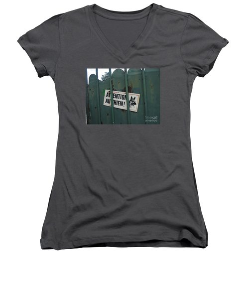 Paris - Farm Dog Women's V-Neck T-Shirt