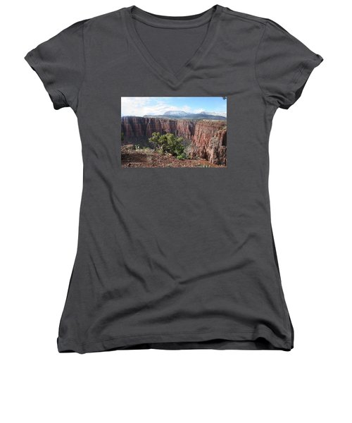 Women's V-Neck T-Shirt (Junior Cut) featuring the photograph Parker Canyon In The Sierra Ancha Arizona by Tom Janca