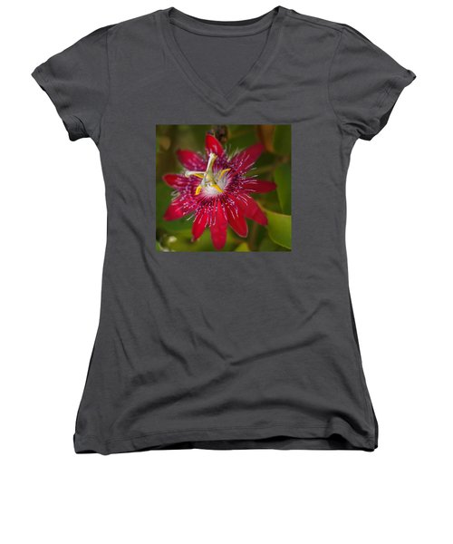 Women's V-Neck T-Shirt (Junior Cut) featuring the photograph Passion Flower by Jane Luxton