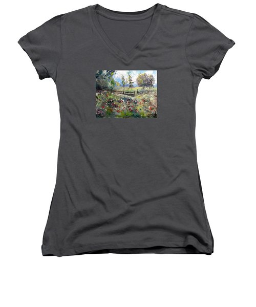 Pasture With Fence Women's V-Neck (Athletic Fit)
