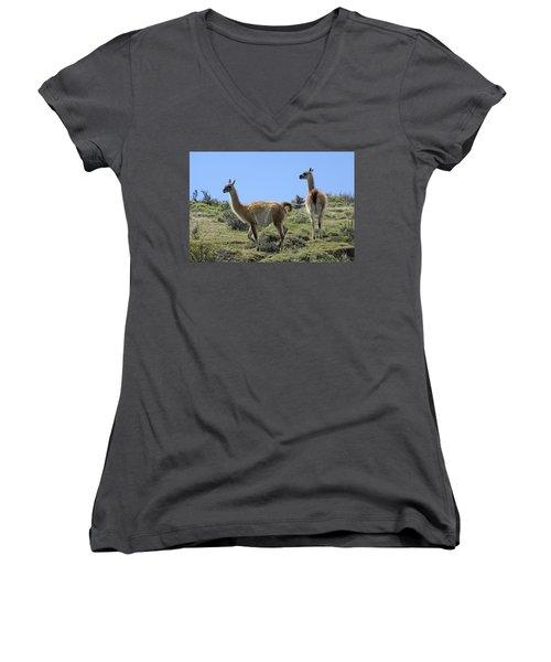 Patagonian Guanacos Women's V-Neck T-Shirt (Junior Cut) by Michele Burgess