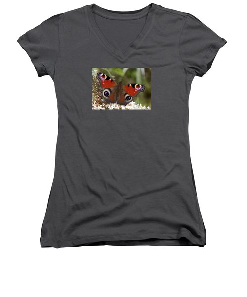 Peacock Butterfly Women's V-Neck T-Shirt (Junior Cut) by Richard Thomas