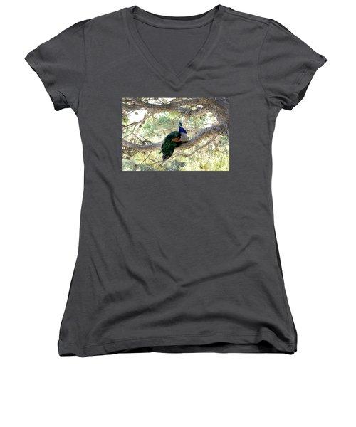 Peacock Women's V-Neck T-Shirt (Junior Cut) by Gina Dsgn