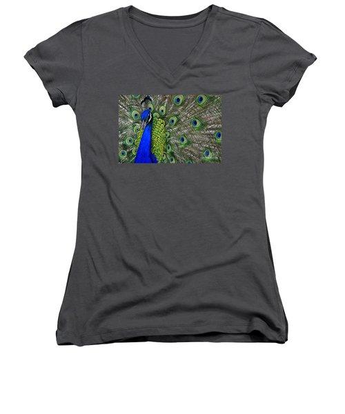 Peacock Head Women's V-Neck T-Shirt
