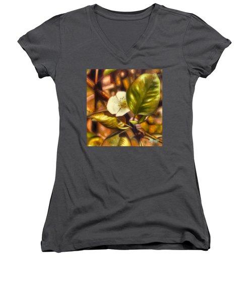 Pear Blossom Women's V-Neck T-Shirt