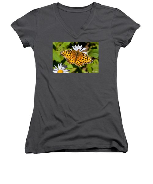 Pearl Border Fritillary Butterfly On An Aster Bloom Women's V-Neck T-Shirt (Junior Cut) by Jeff Goulden