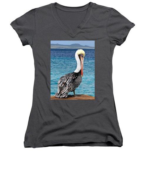 Pelican Portrait Women's V-Neck T-Shirt (Junior Cut) by Jean Noren