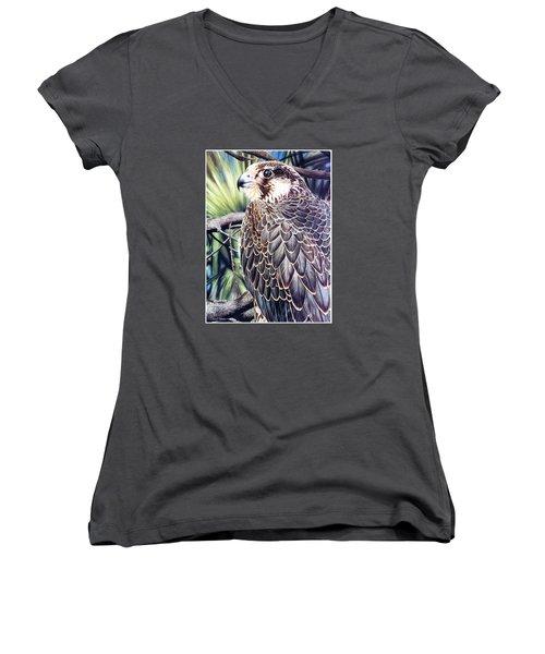 Da138 Peregrine Falcon By Daniel Adams Women's V-Neck