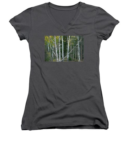 Perfection In Nature Women's V-Neck