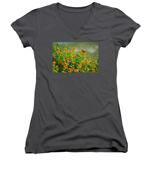 Perfectly Poised  Women's V-Neck T-Shirt