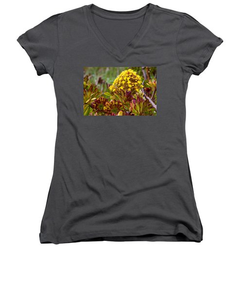 Petal Dome Women's V-Neck T-Shirt (Junior Cut) by Melinda Ledsome