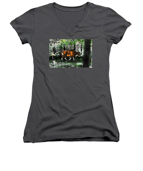 Phenomena Of Banteng Walk Women's V-Neck T-Shirt