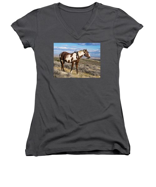 Picasso Of Sand Wash Basin Women's V-Neck T-Shirt (Junior Cut) by Nadja Rider