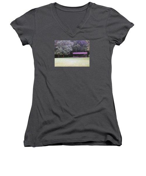 Picnic Shelter Women's V-Neck T-Shirt