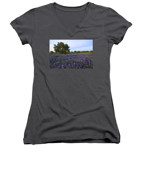 Picture Perfect Women's V-Neck T-Shirt (Junior Cut) by Susan Rovira