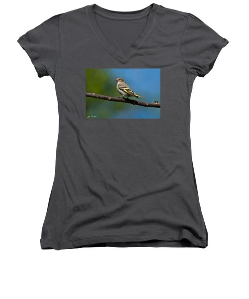 Pine Siskin Perched On A Branch Women's V-Neck