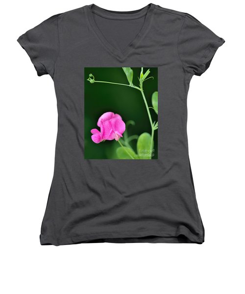 Pink And Green Women's V-Neck T-Shirt (Junior Cut) by David Perry Lawrence