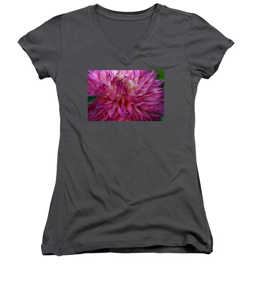 Women's V-Neck T-Shirt (Junior Cut) featuring the photograph Pink And White Dahlia  by Denyse Duhaime