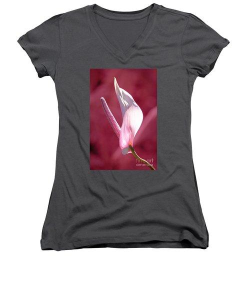 Women's V-Neck T-Shirt (Junior Cut) featuring the photograph Pink Anthurium by Ellen Cotton