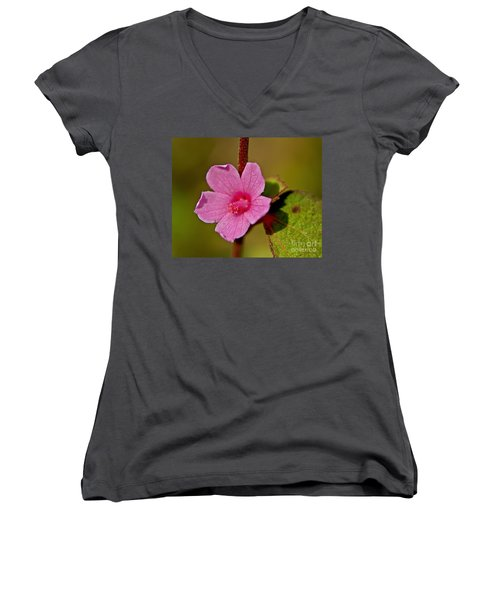 Women's V-Neck T-Shirt (Junior Cut) featuring the photograph Pink Flower by Olga Hamilton