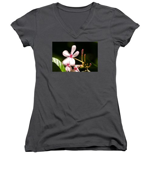 Pink Flower Women's V-Neck