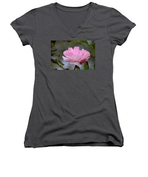 Women's V-Neck T-Shirt (Junior Cut) featuring the photograph The Last Rose by Debra Martz