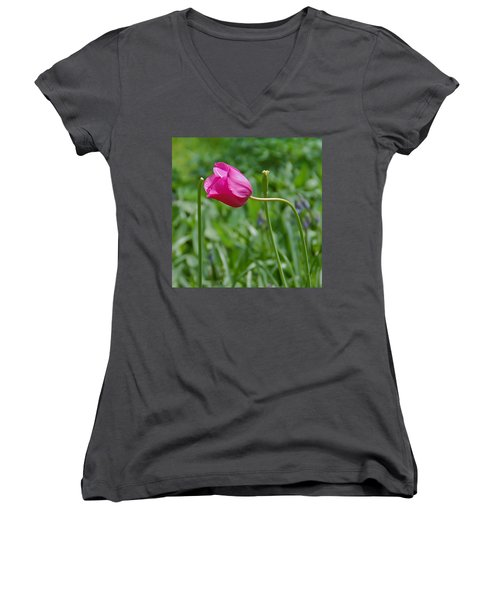 Women's V-Neck T-Shirt (Junior Cut) featuring the photograph Pink Tulip by Aimee L Maher Photography and Art Visit ALMGallerydotcom