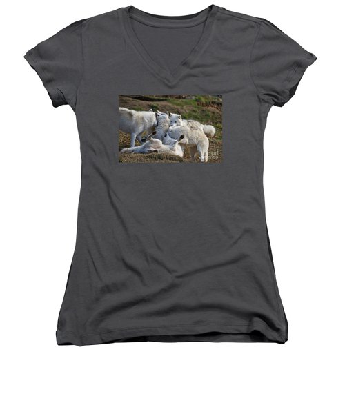 Women's V-Neck T-Shirt (Junior Cut) featuring the photograph Playful Pack by Wolves Only