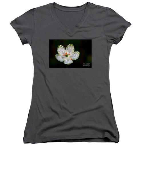Pocosin Manifest #2 Women's V-Neck T-Shirt (Junior Cut) by Paul Rebmann