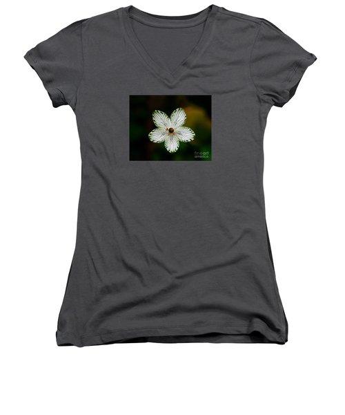 Pocosin Manifest Women's V-Neck T-Shirt (Junior Cut) by Paul Rebmann