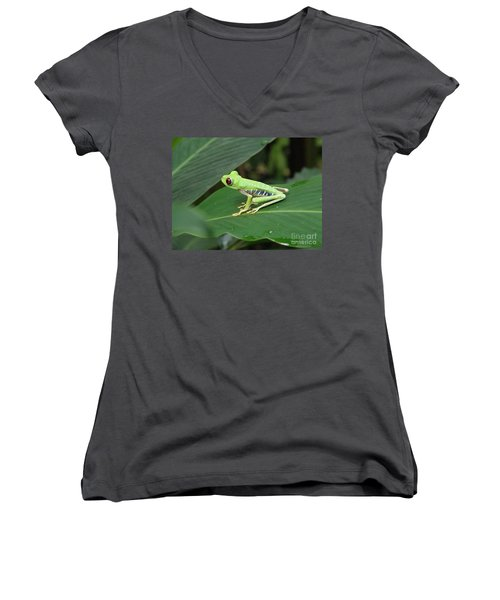 Poison Dart Frog Women's V-Neck T-Shirt (Junior Cut) by DejaVu Designs