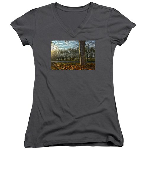 Pollard Willows In Rotterdam Women's V-Neck T-Shirt (Junior Cut) by Frans Blok