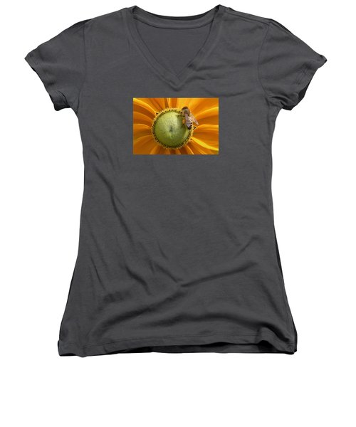 Pollen Time Women's V-Neck T-Shirt (Junior Cut) by Brian Chase